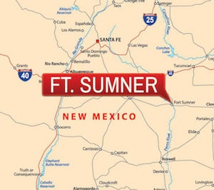 Ft. Sumner – De Baca County Traffic Cases